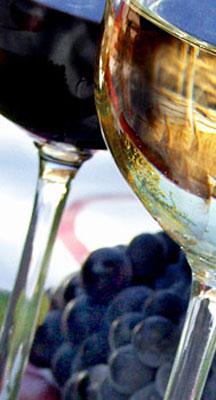 L'abus d'alcool est dangereux pour la santé - A consommer avec modération