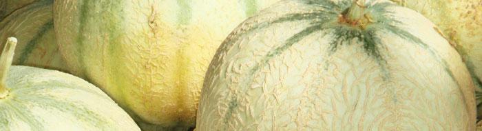 Melons of Languedoc © Photothèque Hérault Tourisme - Julie Noclercq