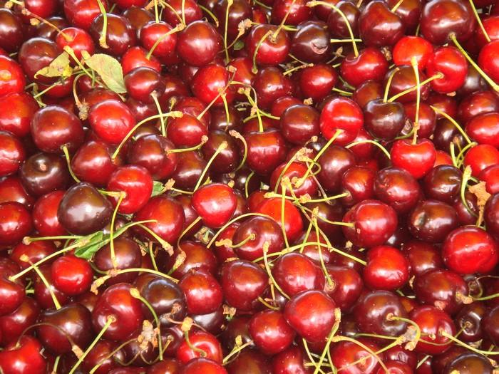 Cherries of Languedoc © Photothèque Hérault Tourisme - Julie Noclercq